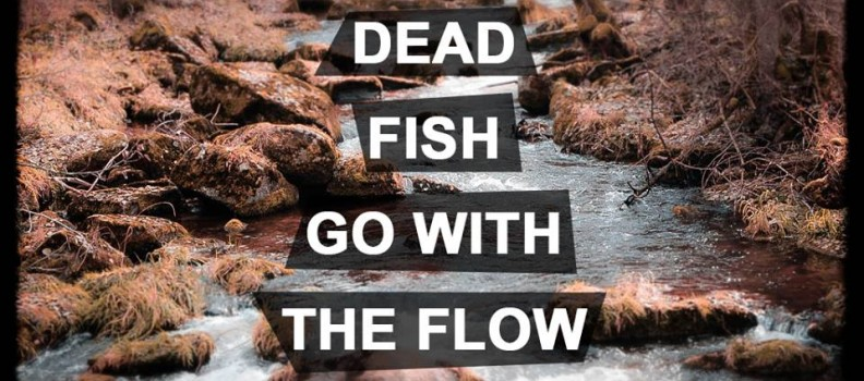 Inspirational quotes for Only dead fish go with the flow