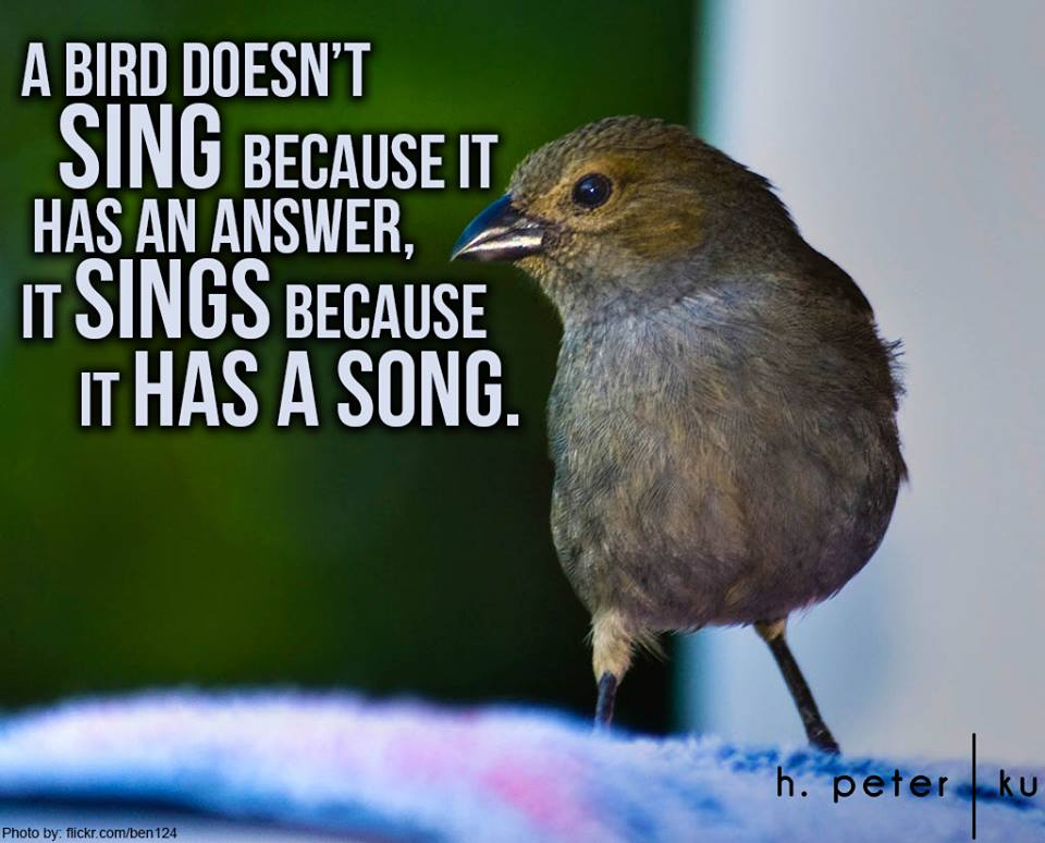A-bird-doesnt-sing-because-it-has-an-answer-it-sings-because-it-has-a-song