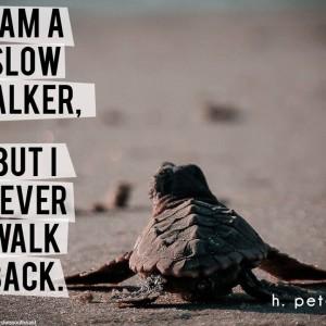 I-am-a-slow-walker-but-I-never-walk-back