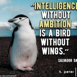 Intelligence-without-ambition-is-a-bird-without-wings-Salvador-Dali