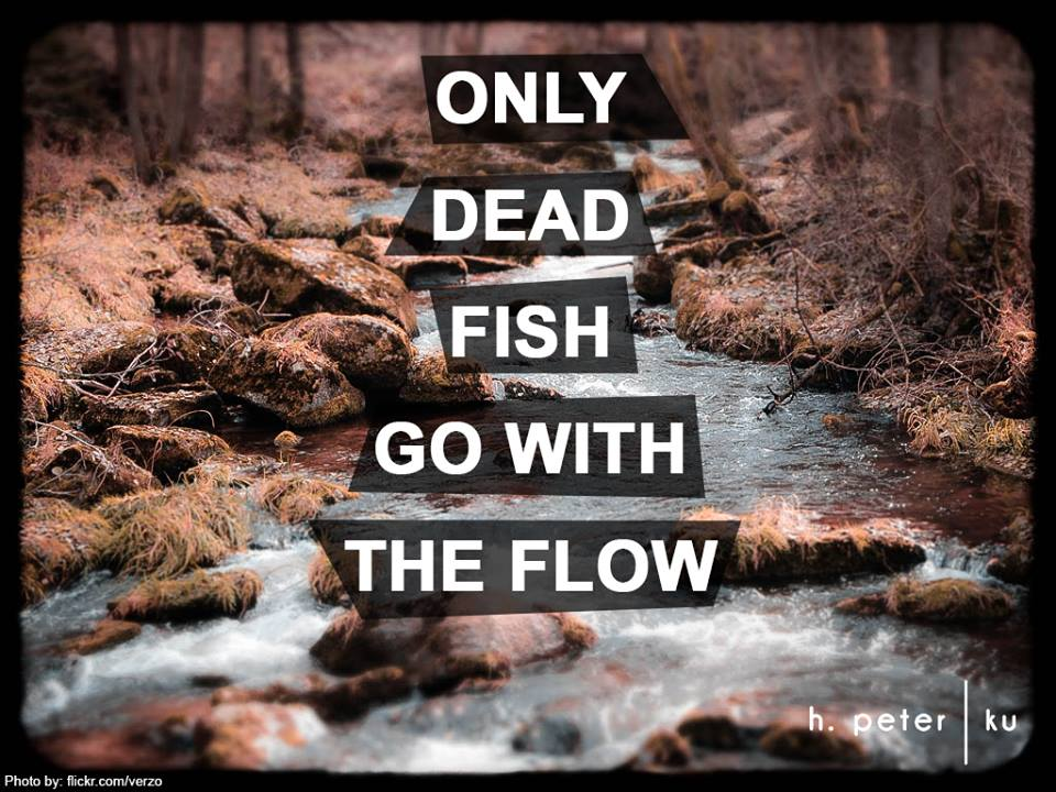 Only-dead-fish-go-with-the-flow