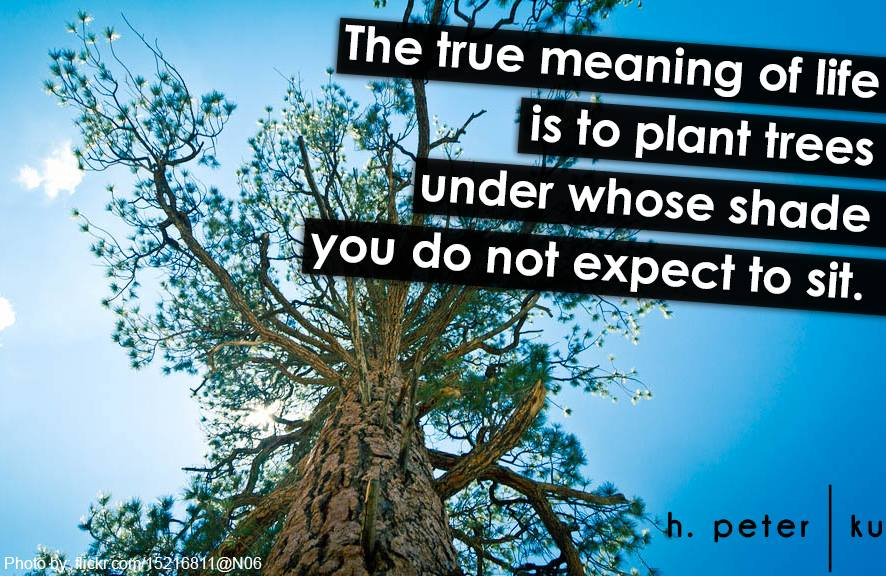 The True Meaning Of Life Is To Plant Trees Under Whose Shade You Do