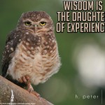 Wisdom-is-the-daughter-of-experience