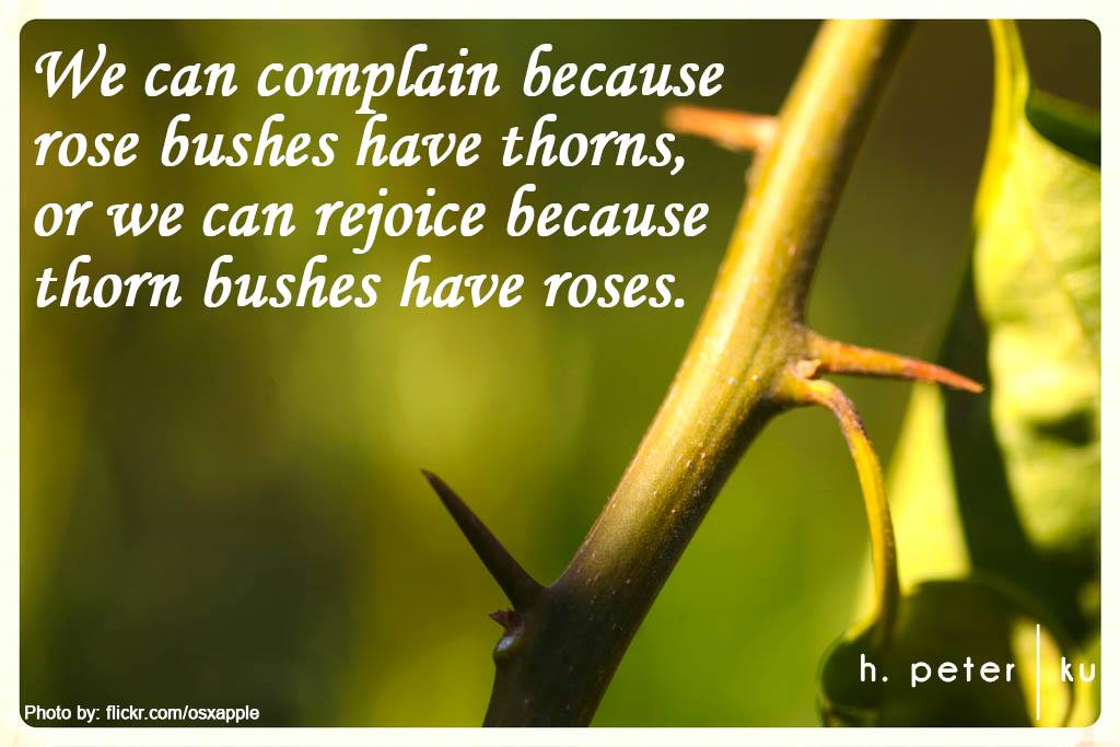 We-can-complain-because-rose-bushes-have-thorns-or-we-can-rejoice-because-thorn-bushes-have-roses