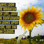 Always-look-at-the-brighter-side-of-life-just-like-the-sunflower-which-looks-upon-the-sun-not-the-dark-clouds