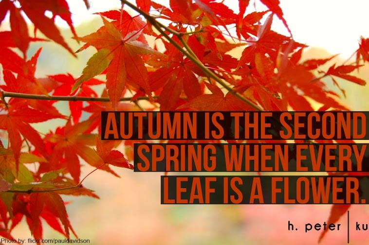 Autumn-is-the-second-spring-when-every-leaf-is-a-flower