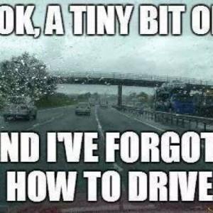 drivingMeme