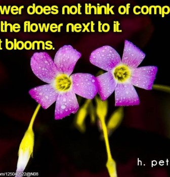 A flower does not think of competing with the flower to it – It just blooms