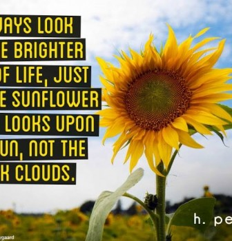 Always look at the brighter side of life – Just like the sunflower which looks upon the sun – Not the dark clouds