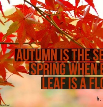 Autumn is the second spring when every leaf is a flower