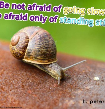 Be not afraid of going slowly – Be afraid only of standing still