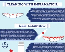Dental Cleanings Infographic