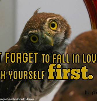 Don't forget to fall in love with yourself first